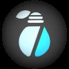 BIRNE7 Logo