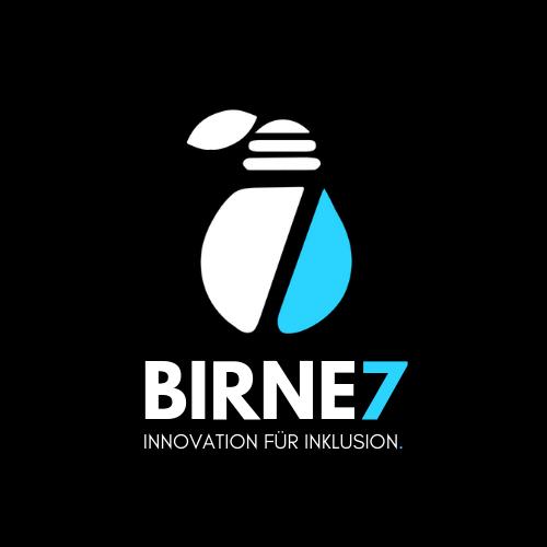 Logo BIRNE7